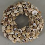 Wreath Shell Mix