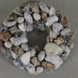 Wreath Shell Blue